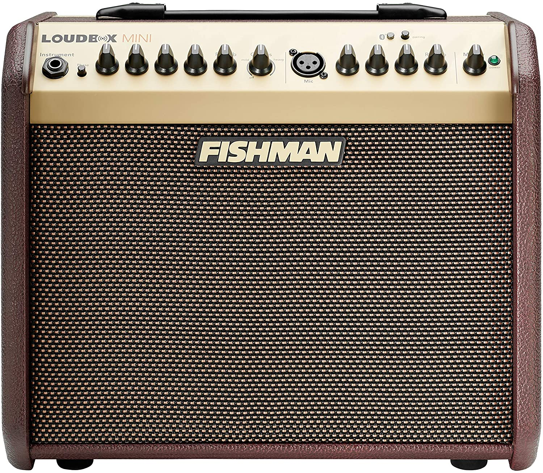 Fishman PRO-LBT-500 Loudbox Mini - Acoustic Guitar Amplifier