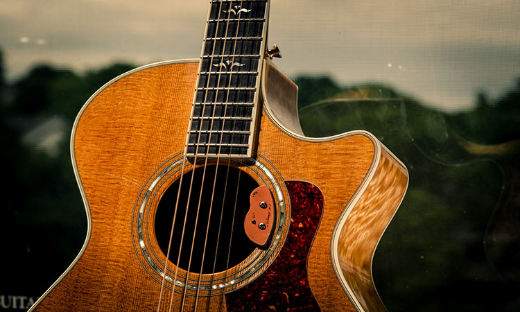 Top 10 Best Natural Acoustic Guitar Preamp In 2021