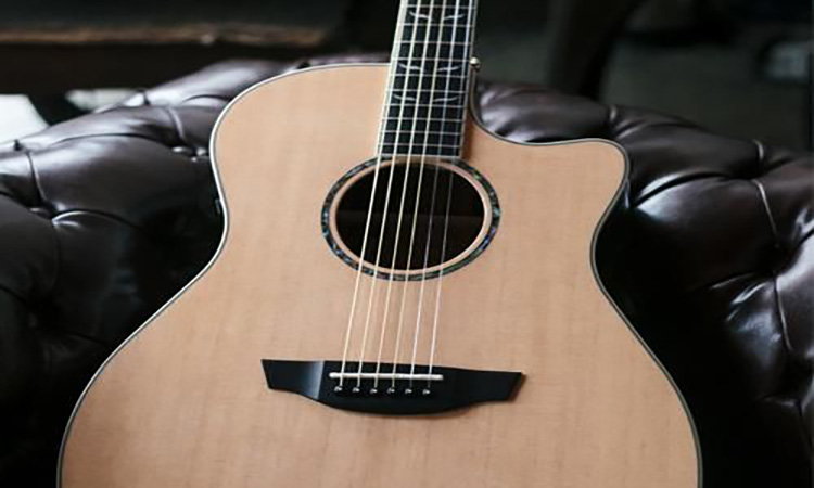 Top 10 Acoustic Guitar Beginner Kits of 2021