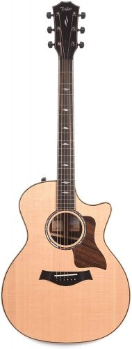 Taylor 814ce - advanced acoustic guitars