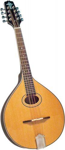 Trinity College TM-325 - Acoustic Mandolins