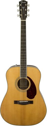 Fender PM-1 - advanced acoustic guitars