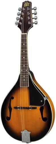 Rogue RM-100A - Acoustic Mandolins