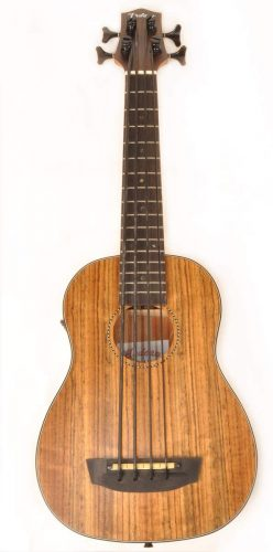 Hadean Acoustic - Acoustic Electric Bass Guitars