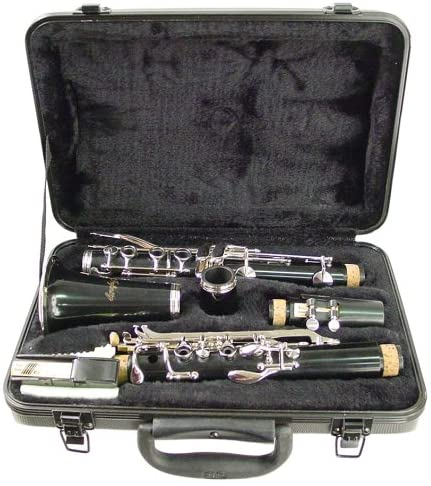 Hisonic Signature Series Clarinet - best clarinets