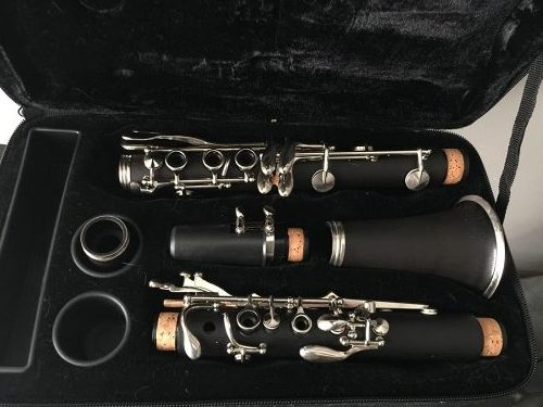 Allora AACL-336 Clarinet - best clarinets