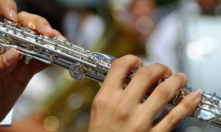 Top 10 Best Flutes For Beginners In 2020