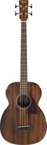 Ibanez 4-String Acoustic - best bass guitars