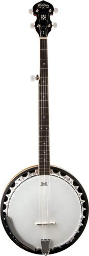 Washburn Banjo - Cheap Banjos