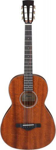 Ibanez AVN9 - Acoustic Guitars