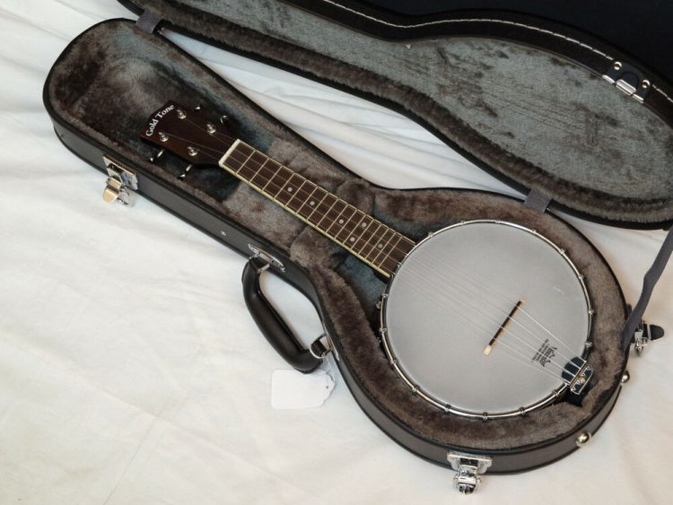 Top 10 Best Banjo Cases In 2020