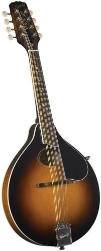 Kentucky KM-270 - best mandolins