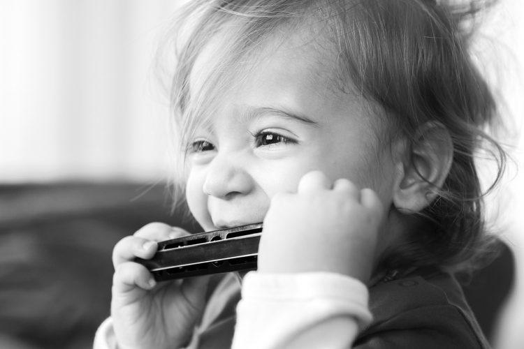 Best Harmonicas - Harmonicas