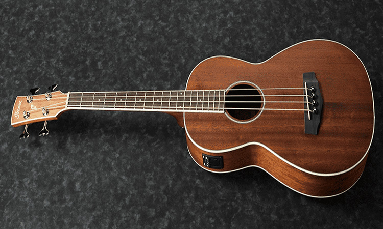 Top 10 Best Acoustic-Electric Bass Guitars in 2020