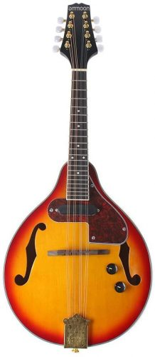 Ammoon 8-String Electric A Style - Cheap Mandolins