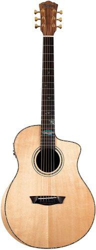 Washburn S24S - Acoustic Guitars