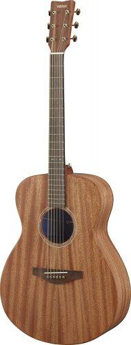 - Acoustic Guitars