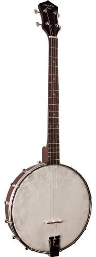 Recording King Tenor Banjo - Cheap Banjos
